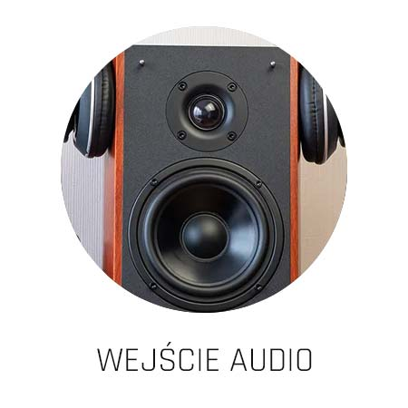 Możliwość podłączenia własnych głośników